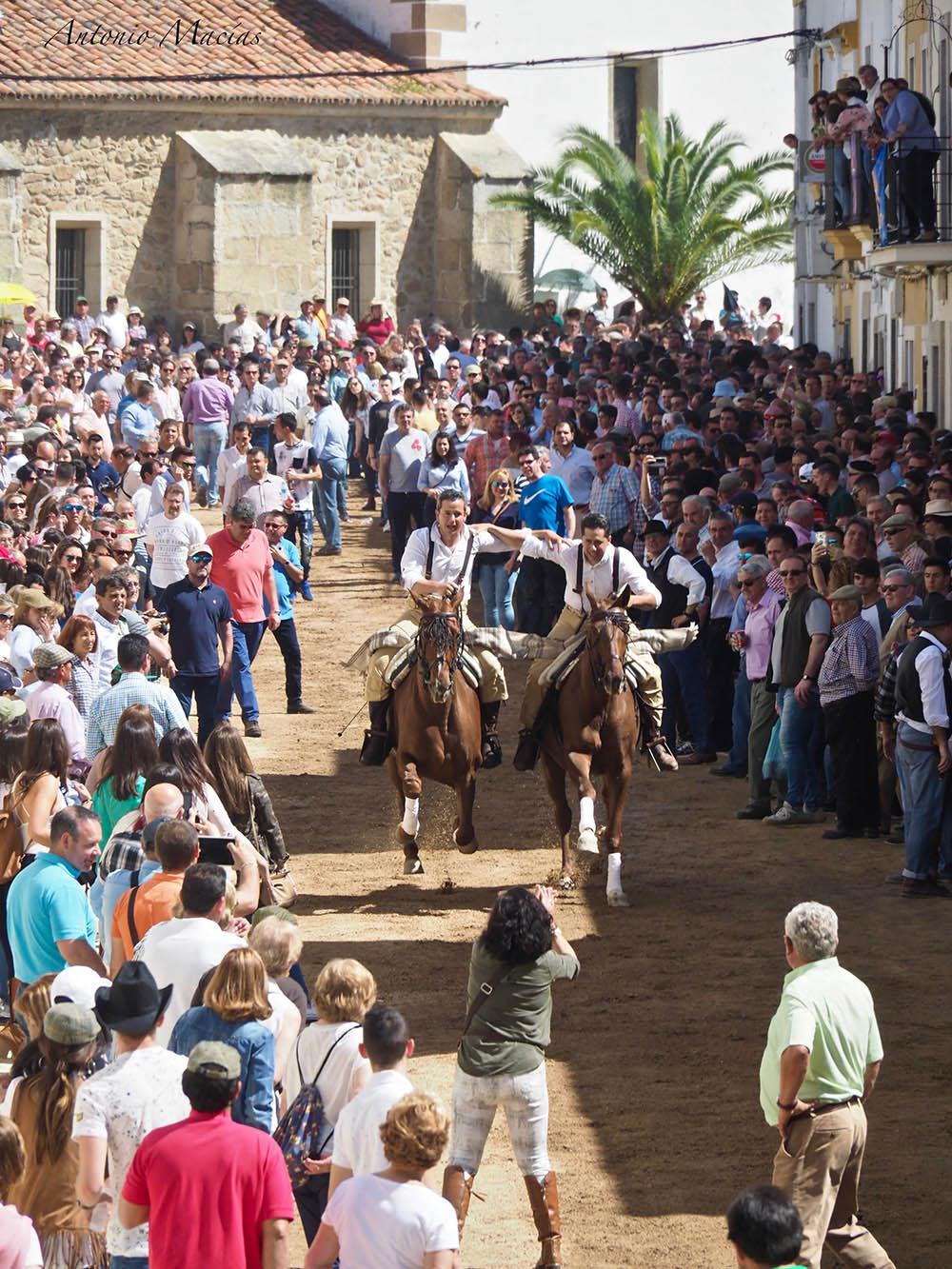 carreras de caballos dia de La Luz