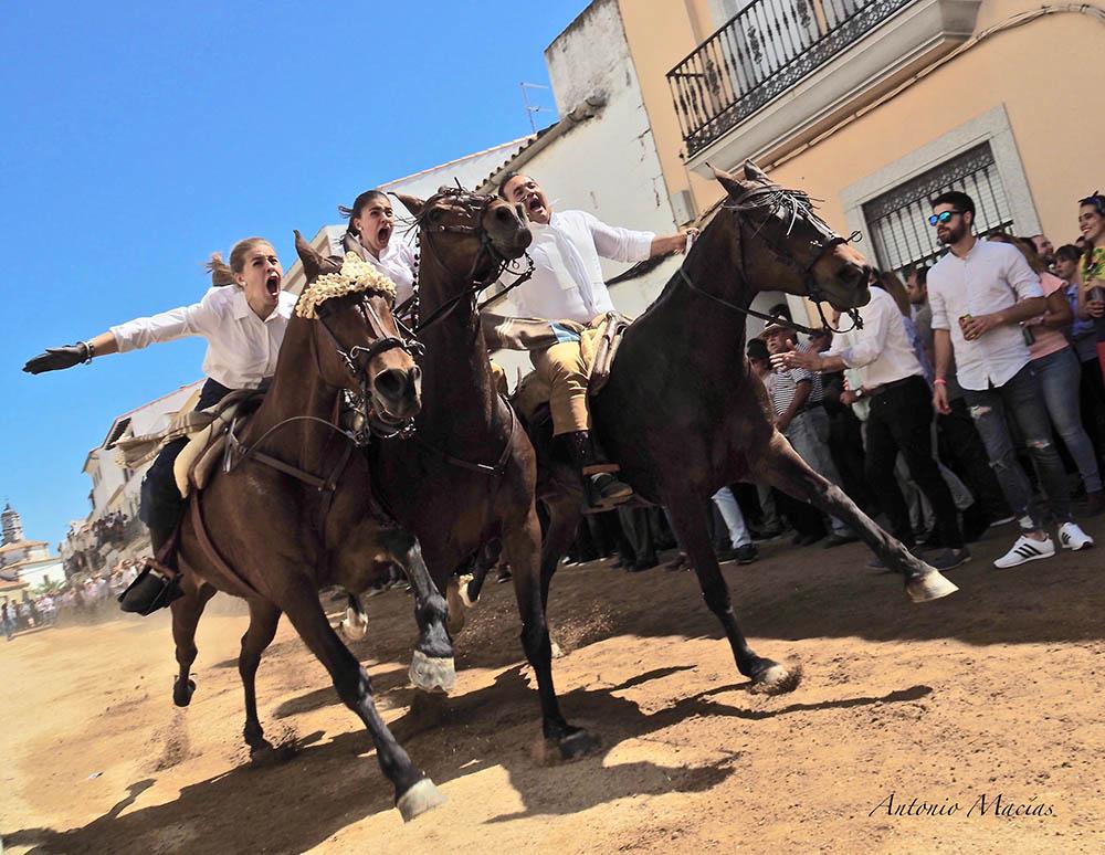 Día-de-la-Luz-carreras-caballos