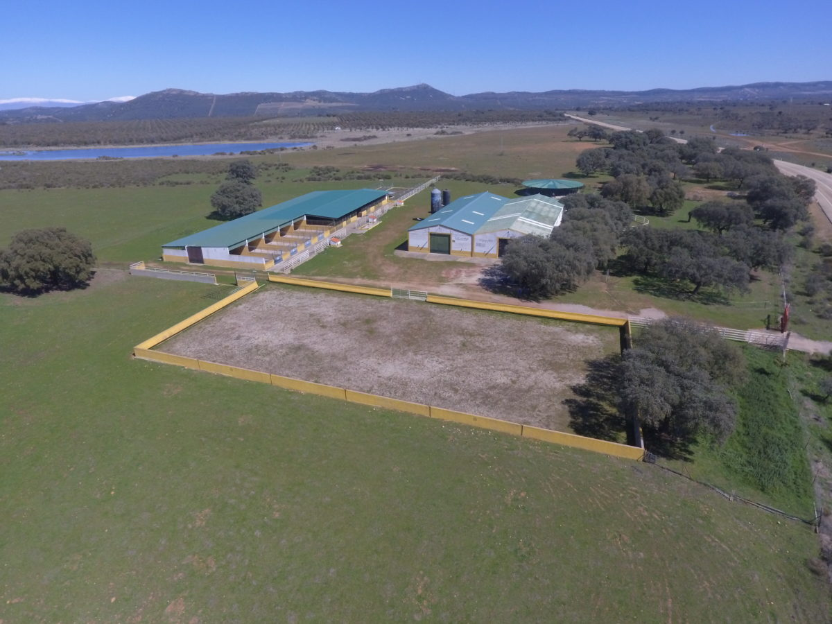 equestrian stable for sale in spain