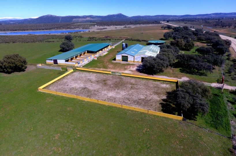 equestrian property for sale in spain