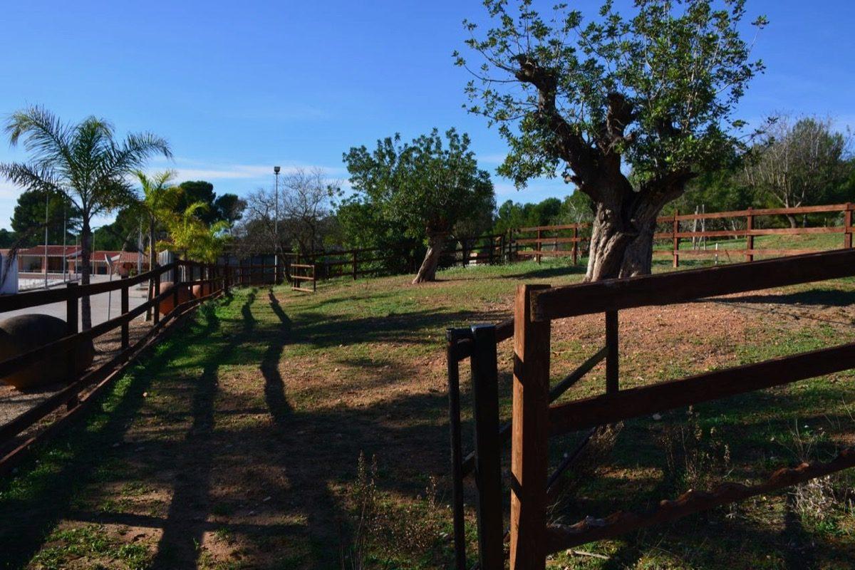 se vende centro equestre muy cerca de la playa, espectaculares instalaciones