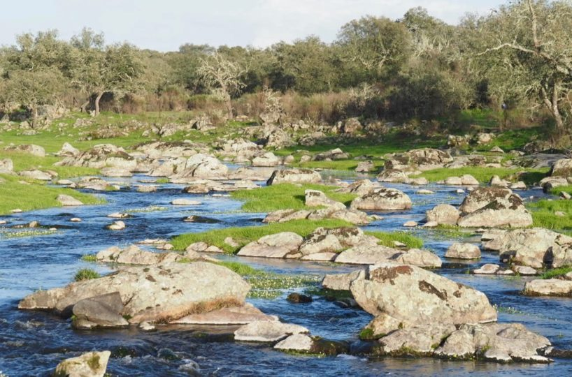 finca cercana a poblacionalmente con rio y molino de agua