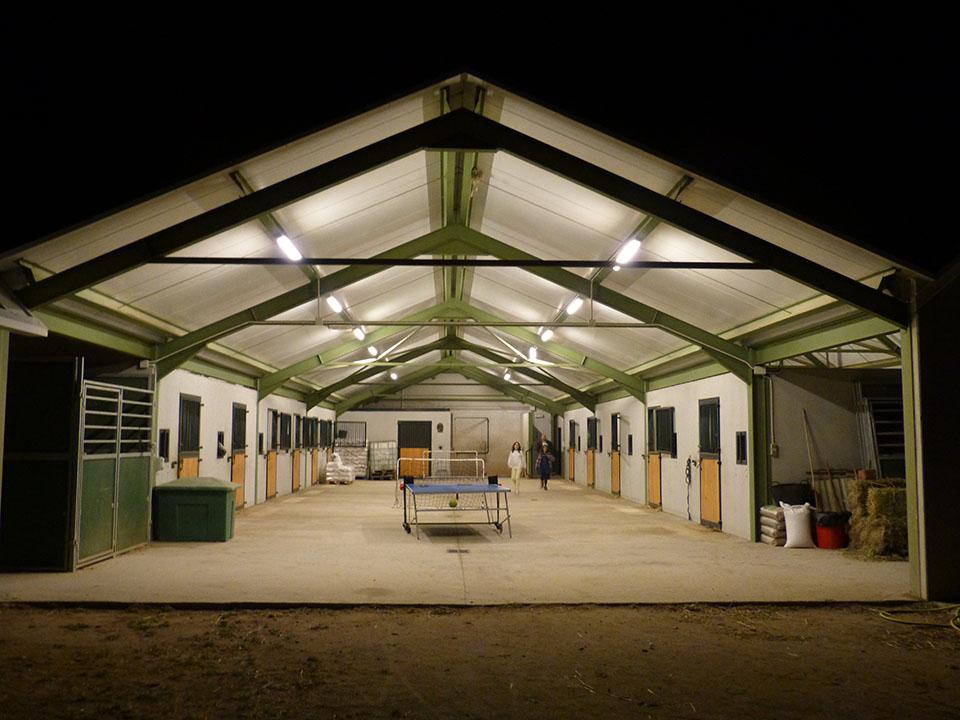 Hipica para doma y cria de caballos en Toledo